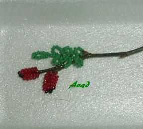 Větvička z šípkového keře se šípky